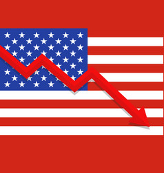 economic crisis with united state flag vector image