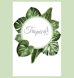 exotic tropical greenery decoration round circle vector image