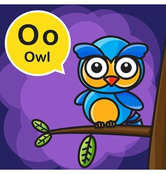 O owl color cartoon and alphabet for children to vector