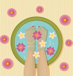 pedicure spa vector image