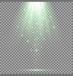 spotlight effect with sequins green color vector image