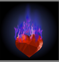 burning heart with blue fire flame vector image