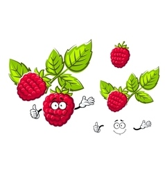 Ripe isolated red rasberry fruit vector