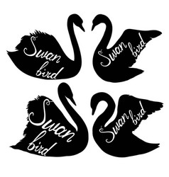 swan silhouette vector image vector image