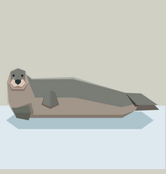 flat design bearded seal vector image vector image