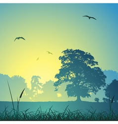 Country meadow landscape vector