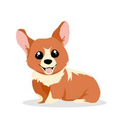 cute and happy corgi dog vector image