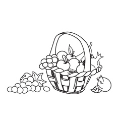 Fruit basket hand drawn vector