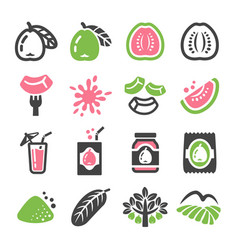 Guava icon vector