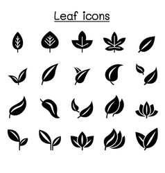 leaf icon set graphic design vector image