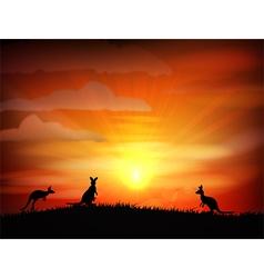 Sunset background with animals kangaroo vector
