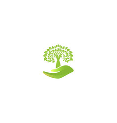 tree care logo designs inspiration isolated on vector image
