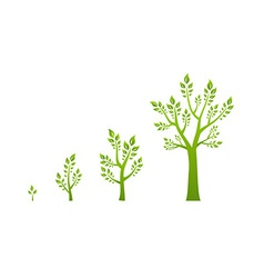 Green tree growth eco concept vector image vector image
