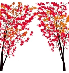 Card with autumn maple tree Red maples Japanese vector image vector image