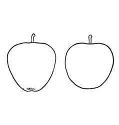 Conical and ovoid forms of apple vintage vector