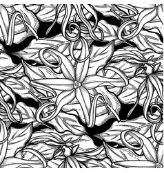 Graphic ylang ylang pattern vector