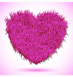 Heart pink carpet vector