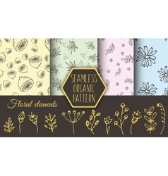 Herbs and wild flowers seamless patterns vector