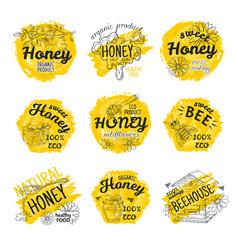 honey sketch logos hand drawn bees and honeycomb vector image