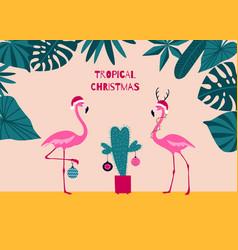 tropical christmas greeting card christmas pink vector image