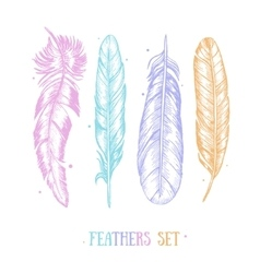 Feathers Set Hand Draw Sketch Card vector image