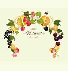 Berry fruit wreath vector