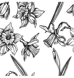seamless pattern with black and white daffodil vector image