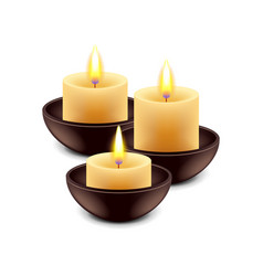 Spa candles isolated on white vector