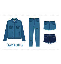 various denim jean clothes vector image