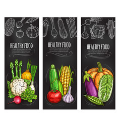 Vegetable chalkboard banner fresh veggies vector