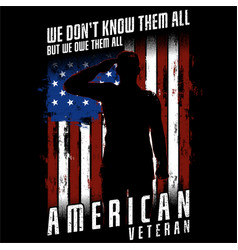 we dont know them all - american veteran vector image