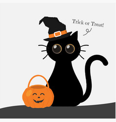 cute round eyes halloween cat with lantern vector image