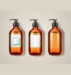Eucalypti glassware bottle or spray vector