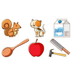 large set different animals and other objects vector image