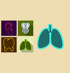 set of medecine icons in flat style ears tooth vector image