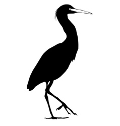 black silhouette of snowy egret vector image