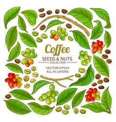Coffee elements set vector