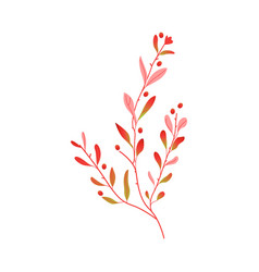 flat abstract autumn plant icon vector image