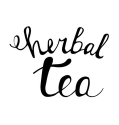 Hand drawn unique letterring herbal tea vector
