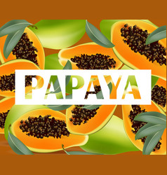 Papaya fruits pattern texture background summer vector