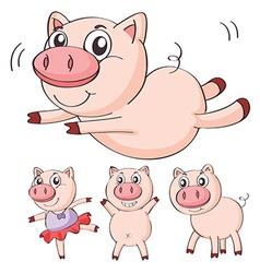 Pigs vector