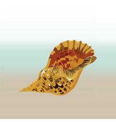 Sea shell hand drawn vector