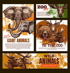Zoo sketch poster wild giant animals vector