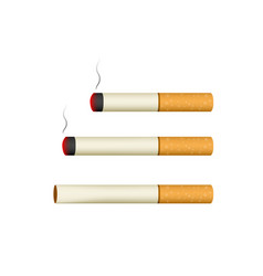 isolated cigarette on white in 3d style vector image