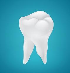 Beauty human teeth vector image vector image