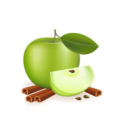 Apple and cinnamon on white background vector