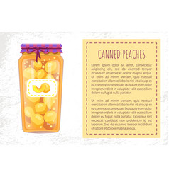 Canned peaches in jar poster vector