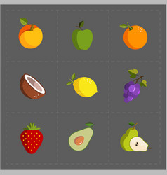 Colorful fruit icon set on grey background vector