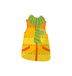 orange warm vest with green scarf boys wear vector image