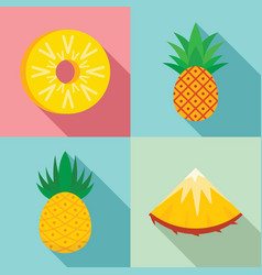 pineapple icons set flat style vector image